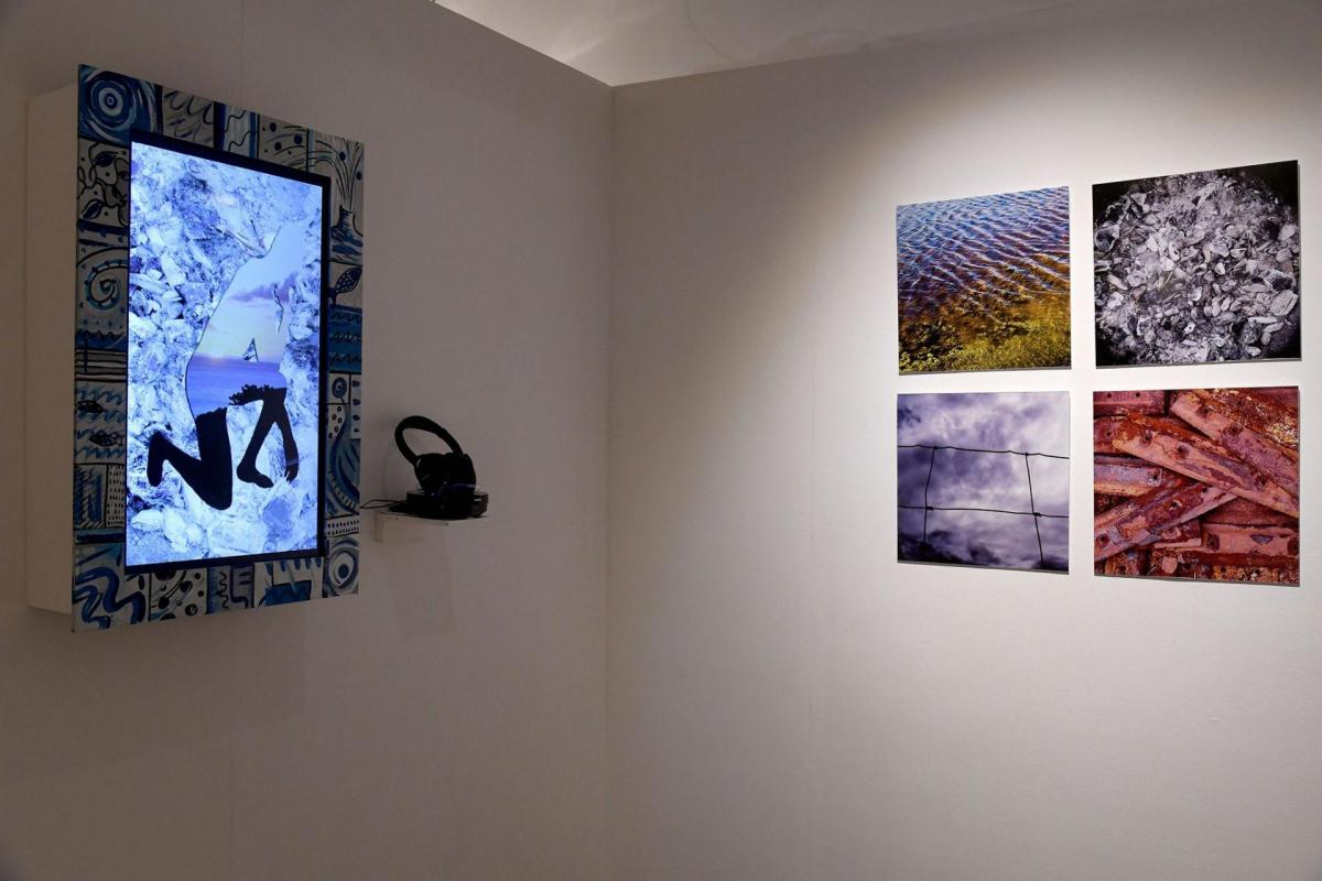 IL-E Sandrine Zedame et Carl Beyer, installation vidéo